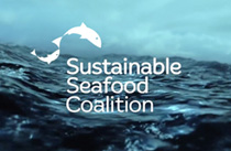 Sustainable Seafood Coalition website by Fluffytech